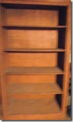 eBay-Shelf-unit