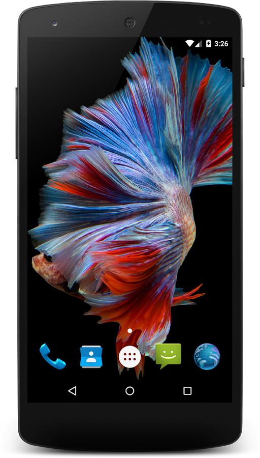 Betta fish hd wallpapers android apps on google play for Siamese fighting fish crossword