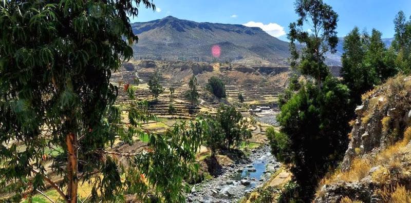 Las Casitas Del Colca - OgygfoEa1GbPQYXDaVki.jpg.950x470_q85_crop_upscale.jpg