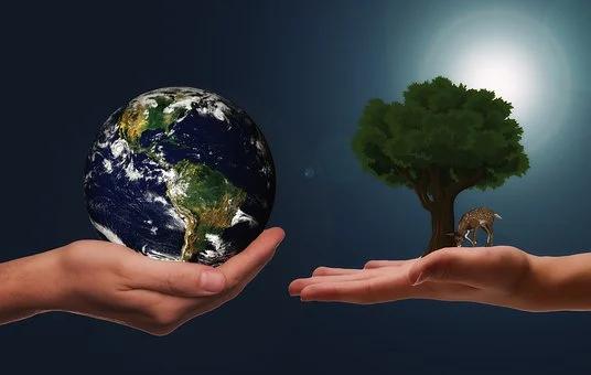 6 Langkah Bisa Kita Lakukan Untuk Menjaga Bumi