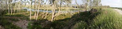río Gállego Zuera puente del tren