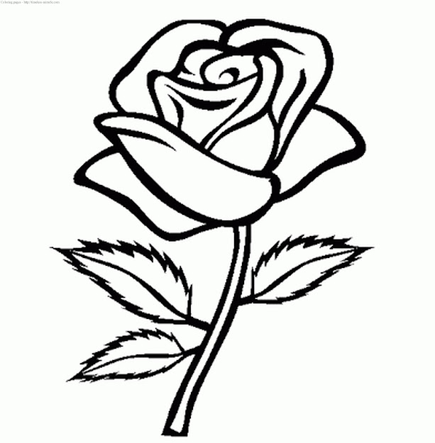 Coloring Pages For Girls Flowers Photo   Review