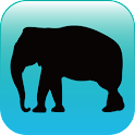 블루래빗동물 - AR icon