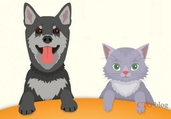 Hướng dẫn sổ giun cho chó mèo đúng cách và những điều cần biết
