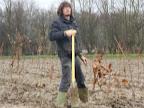 20120128-boomplantactie-preshoekbos / P1280028.JPG