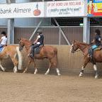 Ponykamp week 1 2012