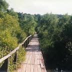 Белогорье - Заповедник лес на Ворскле 019.jpg