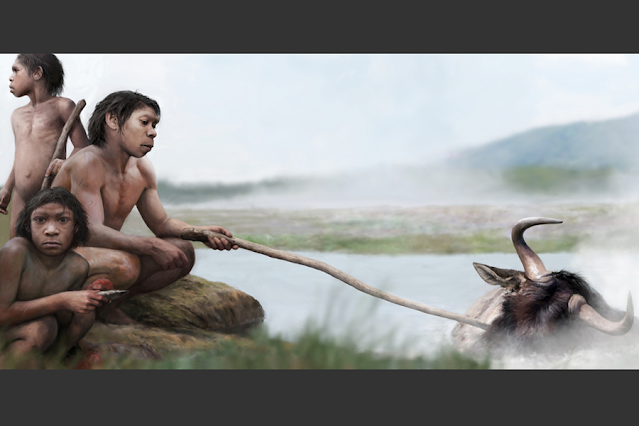 Before Fire: Did Our Early Ancestors Boil Their Food in Hot Springs?
