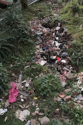 litter problem in Dharamsala, Dharamsala problems