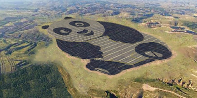 China built a 250-acre giant panda-shaped solar farm