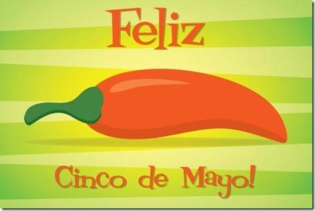 5 de mayo mexico (7)