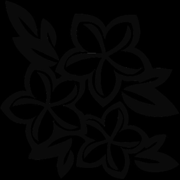 Plumeria Flower Cartoon  White Hawaiian Flowers Cartoon