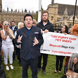 OIC - ENTSIMAGES.COM - Boycott dogs4us speaker at the Puppy Farming Protest - demonstration and photocall 24th May 2016, rally and photocall in London's Parliament Square to raise awareness of the UK's cruel puppy farming trade, in association with PupAid, Boycott Dogs4Us and C.A.R.I.A.D.  Photo Mobis Photos/OIC 0203 174 1069