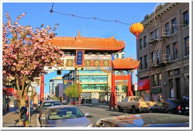 160410_Victoria_Chinatown_0025