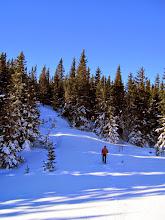 Photo: Wir verlassen bald die präparierten Wege und gehen durch den Wald aufwärts.
