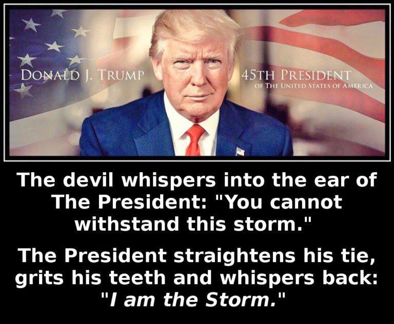 [donald+trump+is+the+storm%5B3%5D]
