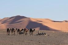 Maroko obrobione (43 of 319).jpg