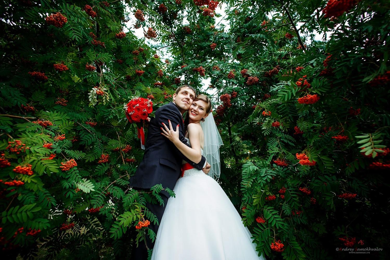 свадебные места для фото в омске деревянных