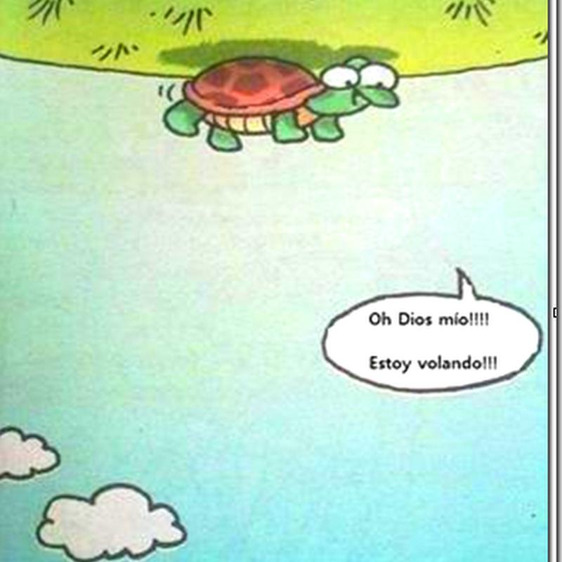 Humor gráficoTortuga voladora