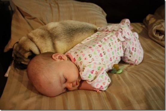 niña con perro (11)