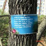 Серебренниковой Наталье Ивановне за идею и воплощение стихотворных плакатиков за кроасоту.