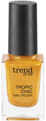 4010355285553_trend_it_up_Tropic_Chic_Nail_Polish_020