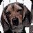 HYPNAGOGIC LOGIC avatar image