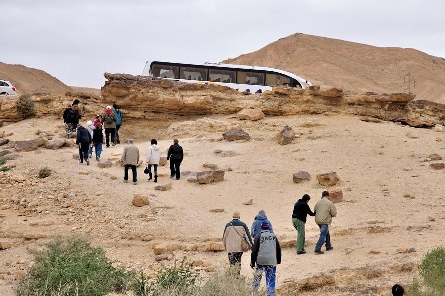 Наша туристская группа вернулась к автобусу. Экскурсия гида Светланы Фиалковой в пустыню Негев.