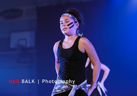 Han Balk Voorster Dansdag 2016-3679.jpg