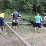 Campaments Estiu Cabanelles 2014 - IMG_0273.JPG