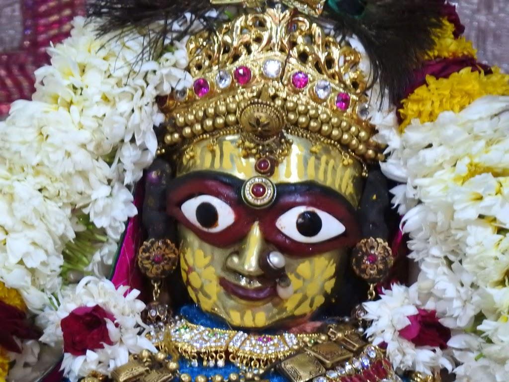 Radha Govind Devji Deity Darshan 07 Jan 2017 (5)