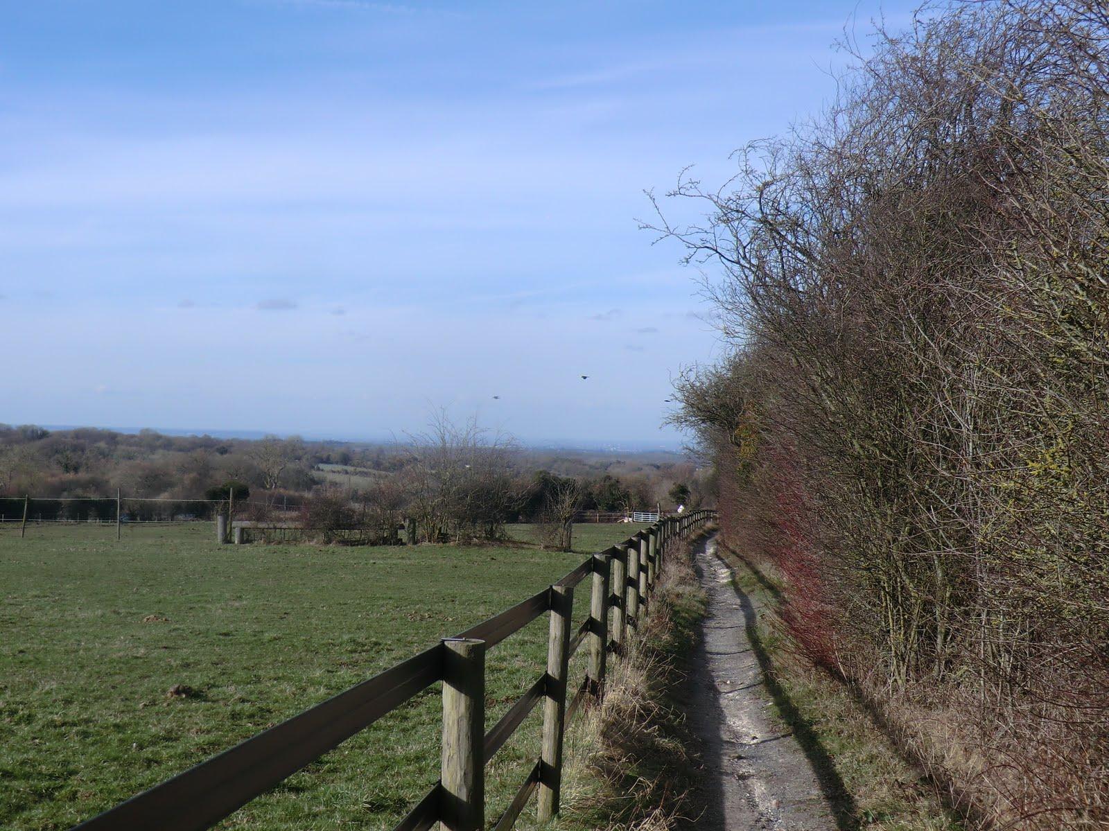 CIMG3645 Bridleway to Nohome Farm