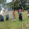 Bhabinkamtibmas Kelurahan Baula Ikut Berpartisipasi Dalam Pengendalian Hama Tikus di Wilayah Binaannya