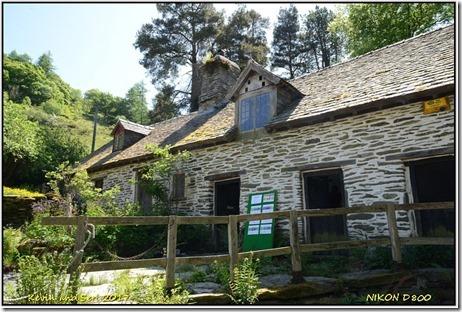 Gilfach Farm - May
