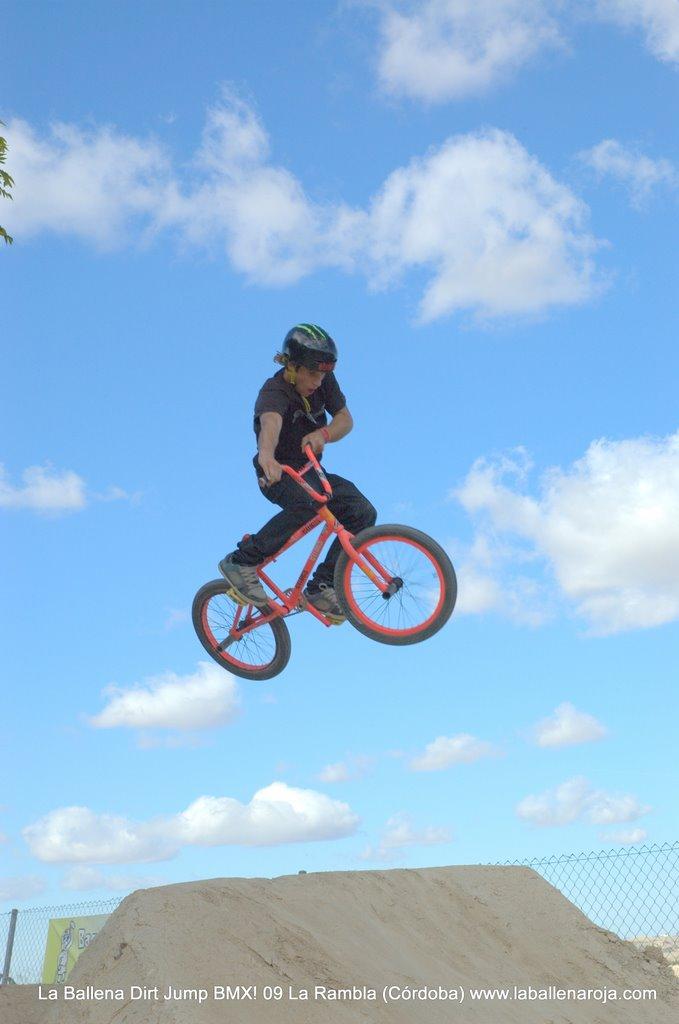Ballena Dirt Jump BMX 2009 - BMX_09_0013.jpg