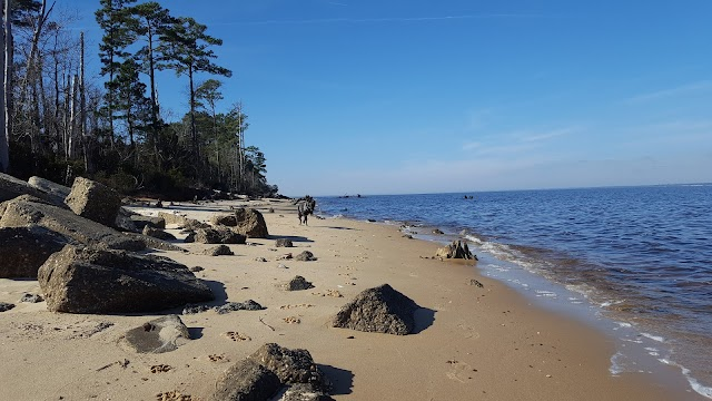 Havelock North Carolina