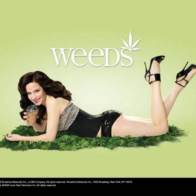 Weeds acclamata darkcomedy a stelle e strisce profondamente oltraggiata dalla tv italiana (1a stagione).
