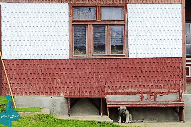 casa fundata toamna