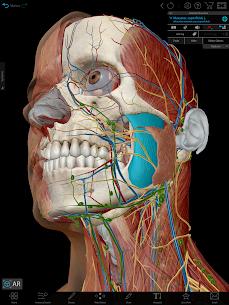 Human Anatomy Atlas 2021:Complete 3D Human Body 9
