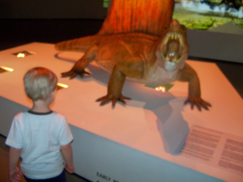 Houston Museum of Natural Science - 116_2691.JPG