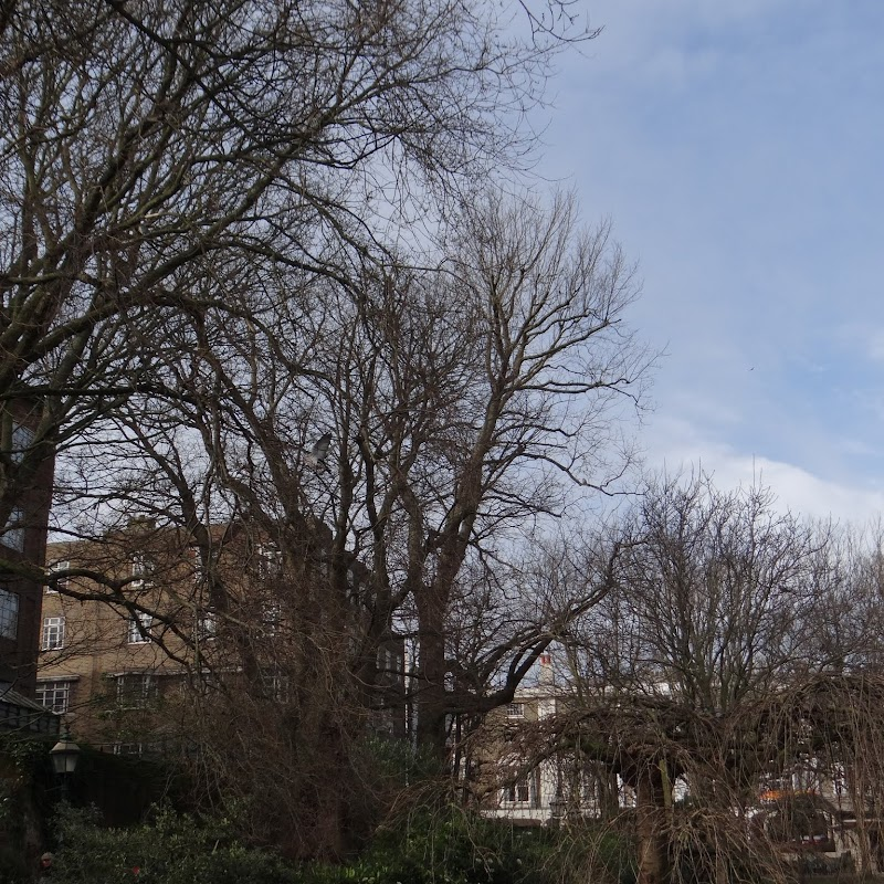 Brighton_102.JPG