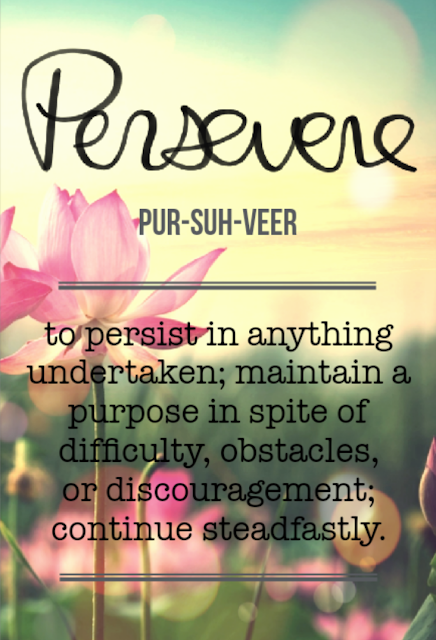 Word of the Year: Persevere | Danielle Hernandez