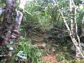 ここからは崖を登ることになる。村の心尽しは細いロープ