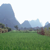 1. Rice Field. Guilin