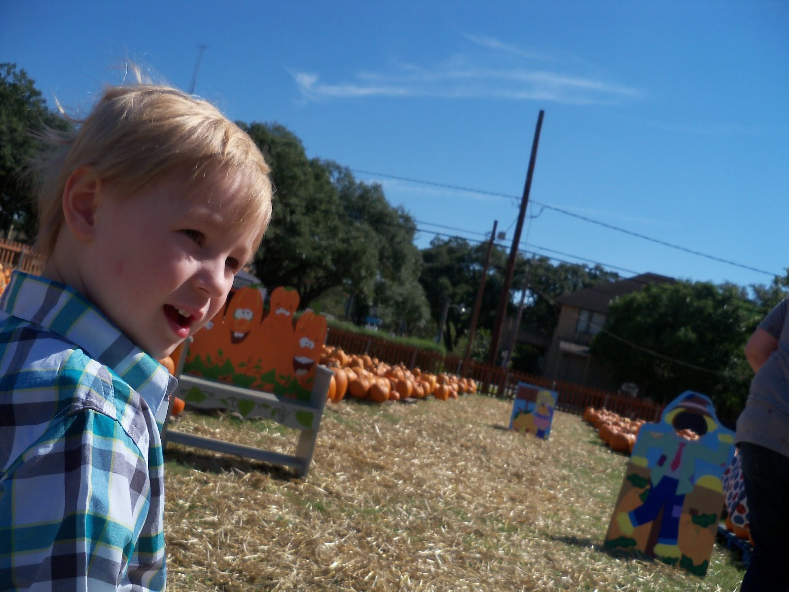 Pumpkin Patch 2015 - 100_0386.JPG