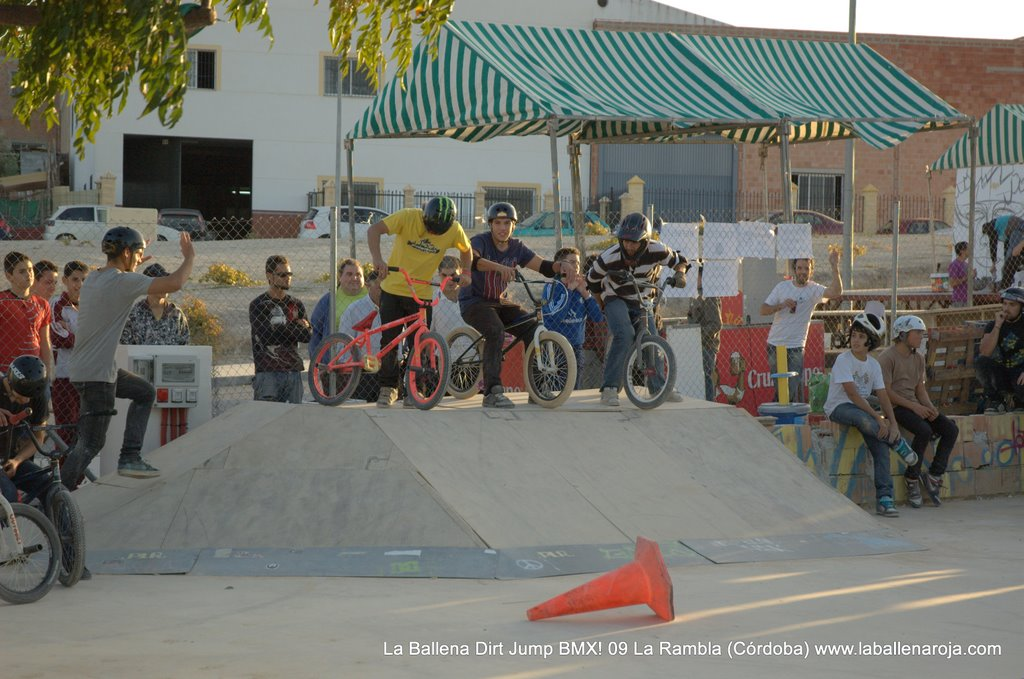 Ballena Dirt Jump BMX 2009 - BMX_09_0122.jpg