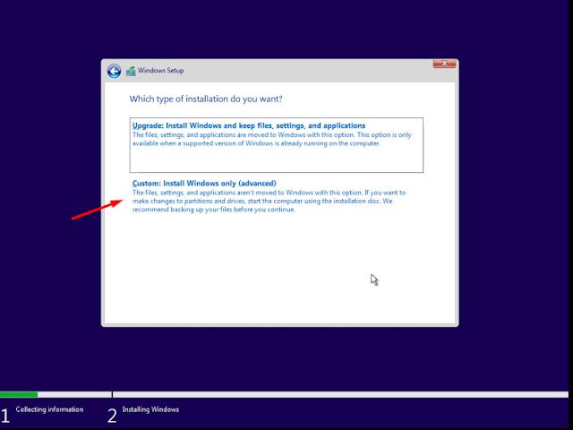 Select Custom Windows Installation