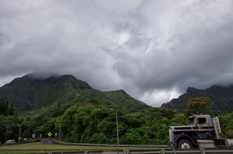 06-18-13 Waikiki, Coconut Island, Kaneohe Bay - IMGP6989.JPG