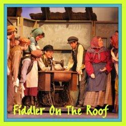 Thumbnail - SYE_Fiddler2011_1.jpg