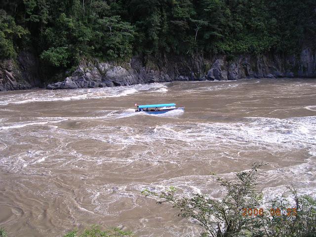Le Río Marañón au Pongo de Manseriche (Pérou). Photo : Amazon Insects